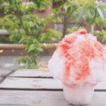 夏といえばやっぱりこれ。かき氷機と自家製シロップでお家かき氷を楽しむワザ