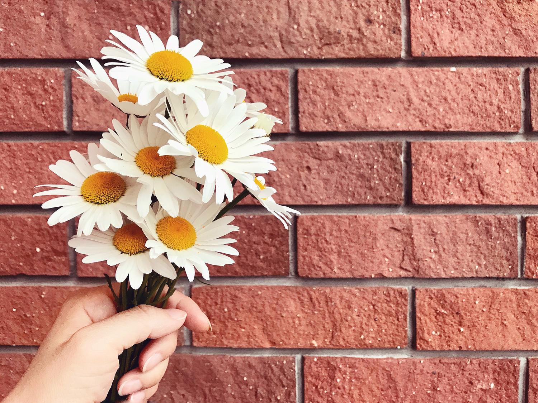 可憐なお花をモチーフに
