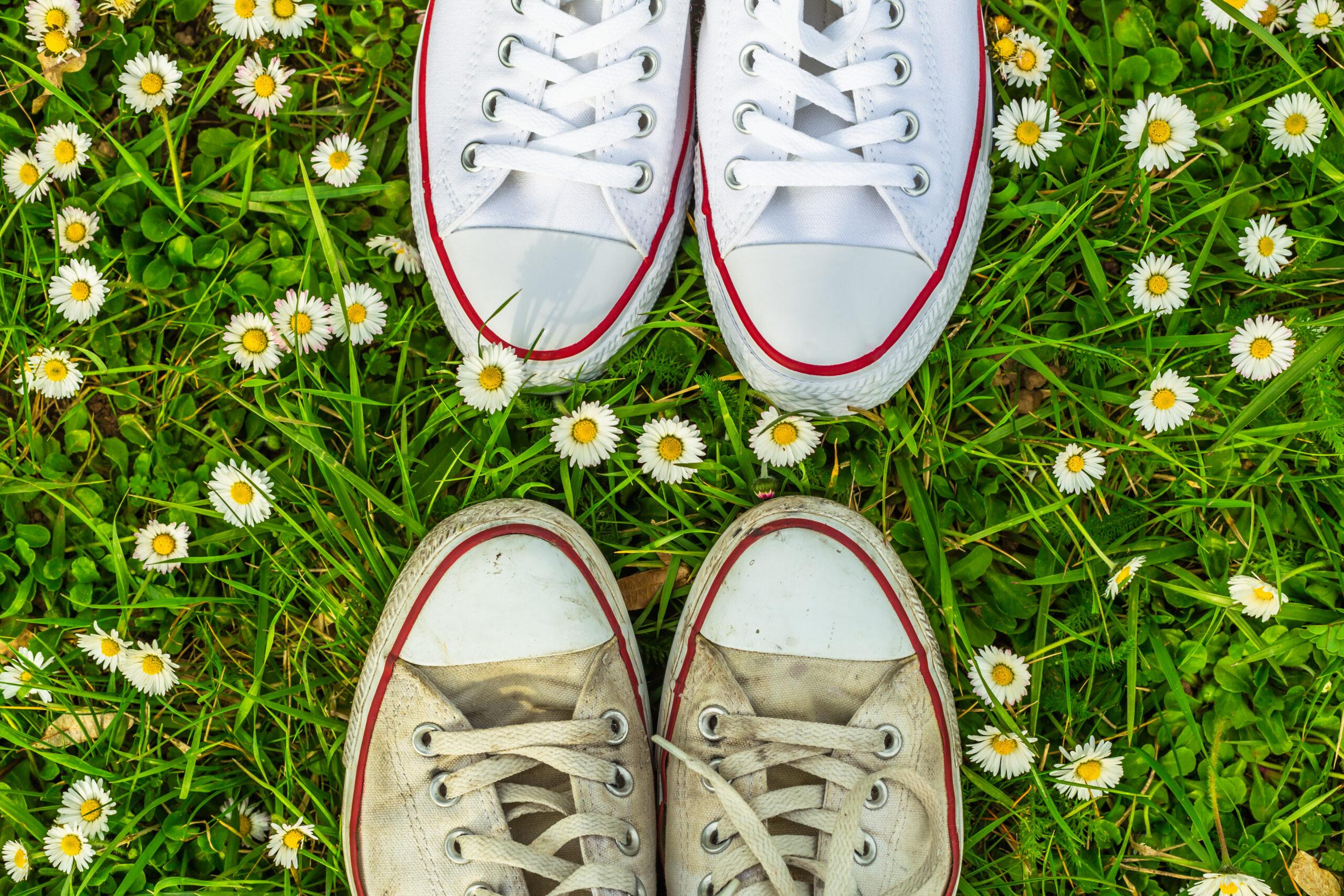洗える靴と洗えない靴
