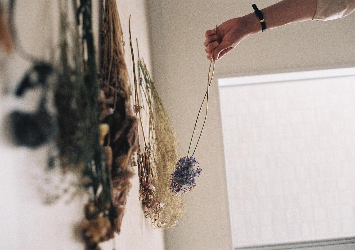 ex. お花の美しさに頼るのもアリ