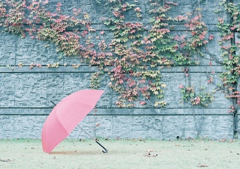 雨の日の準備、どうしてる?