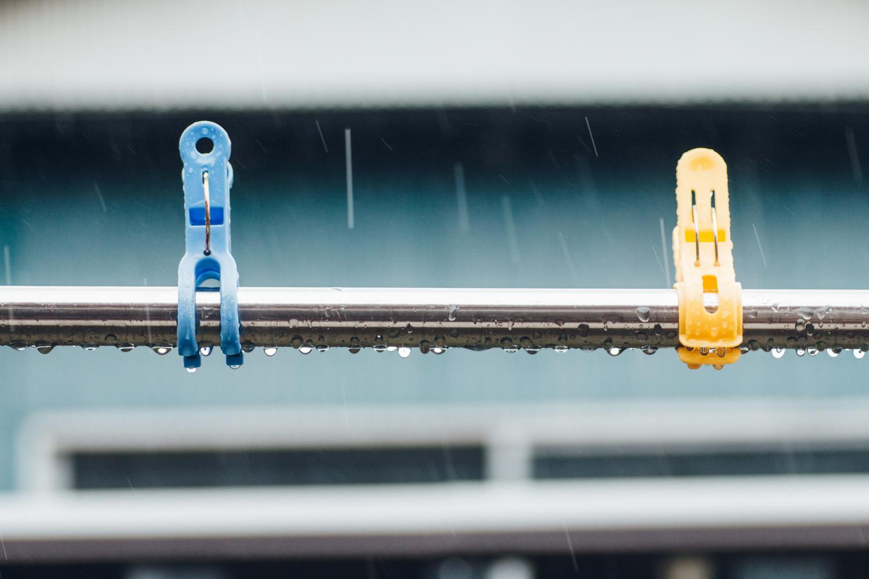 フィルムカメラ:暗い背景を選んで雨粒を写す