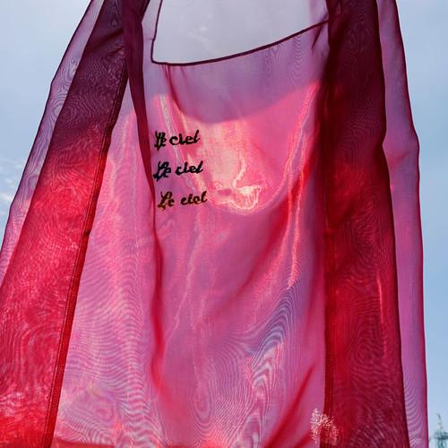 シースルー刺繍エコバッグ