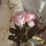 贈ったり飾ったり。ドキッとさせる花言葉とフラワーベースで、お花との暮らしを。