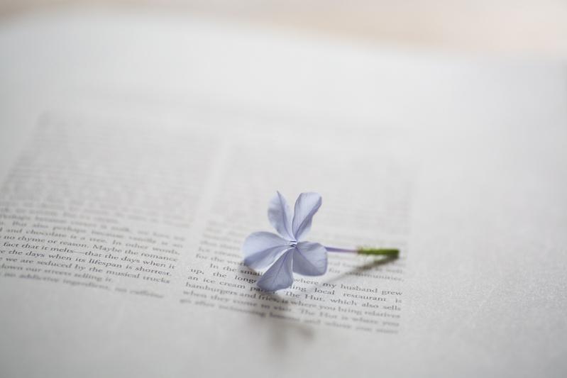 【悩み別】今、この本を求めてなかった?心に寄り添う一冊をあなたに贈る