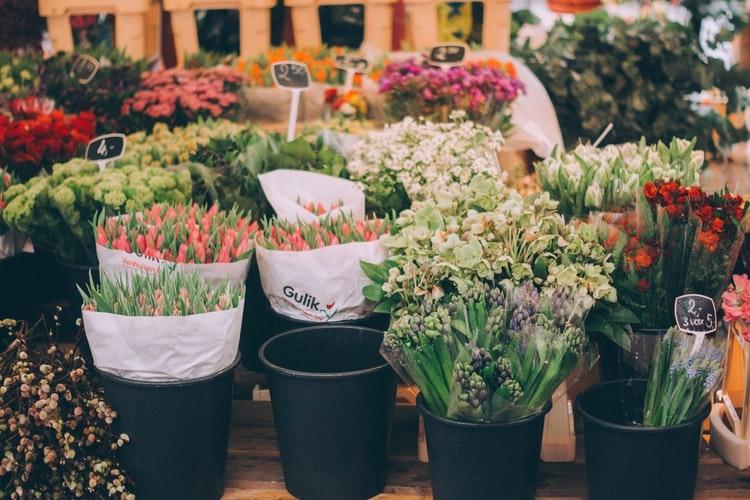 花束をもらうとうれしいの