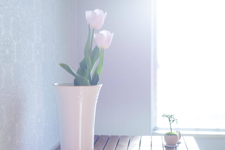 晴れた午前中:お花を飾ってみる