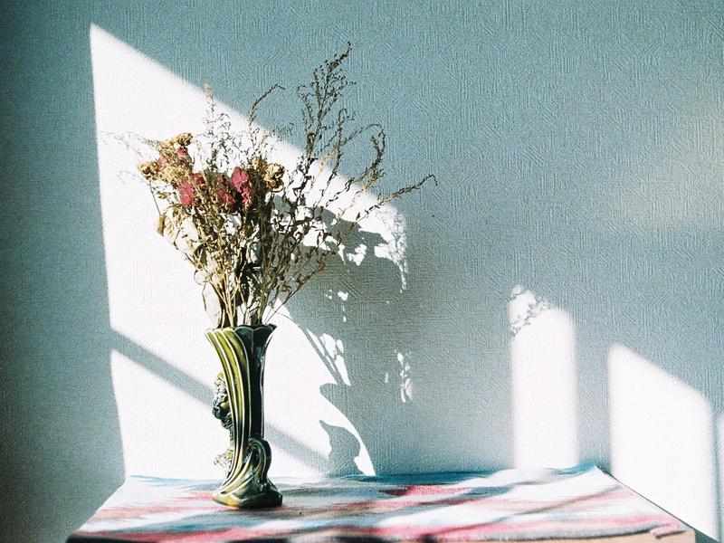 散歩がてらにお花をGET