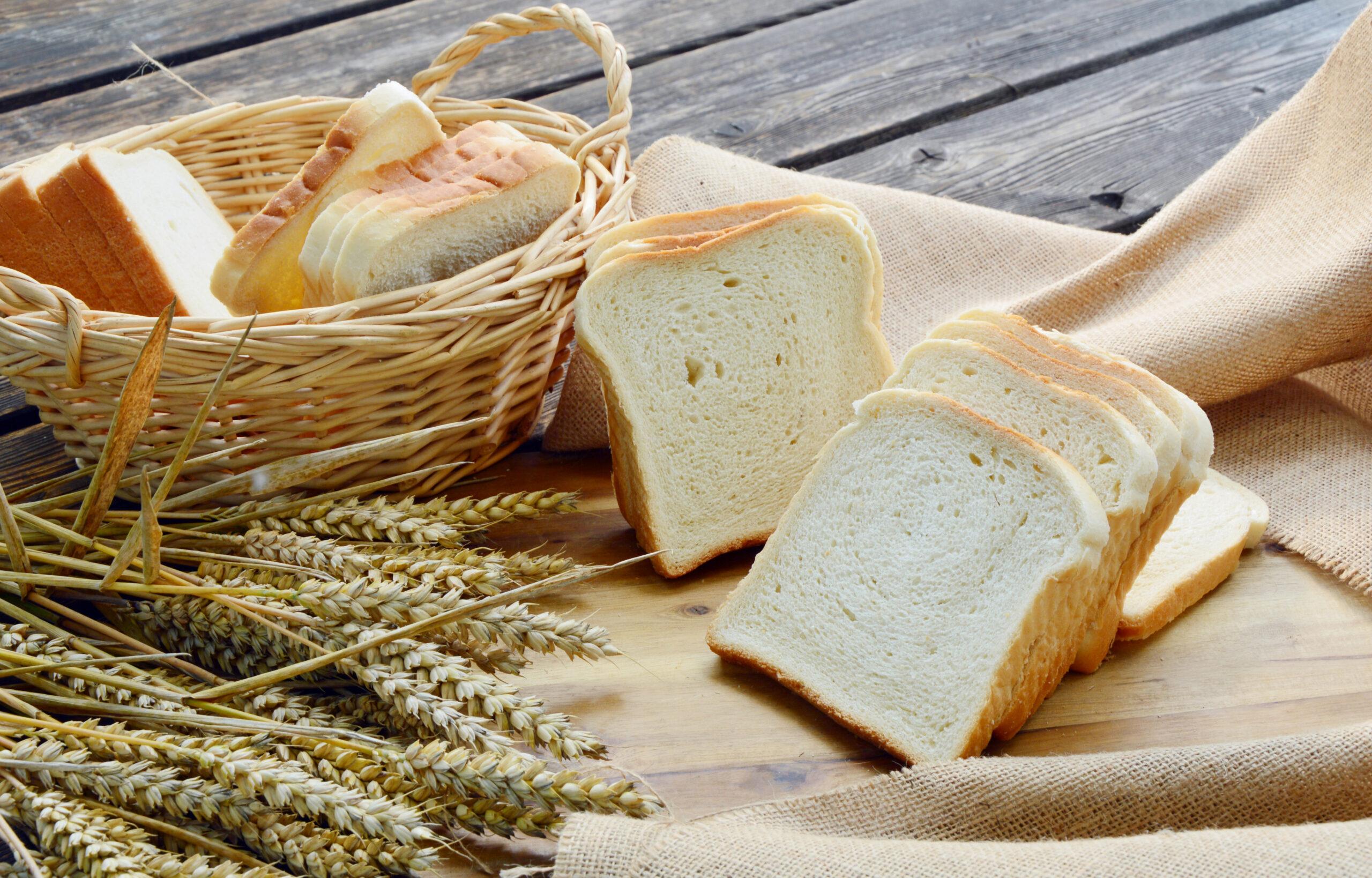 食パンが大ブーム