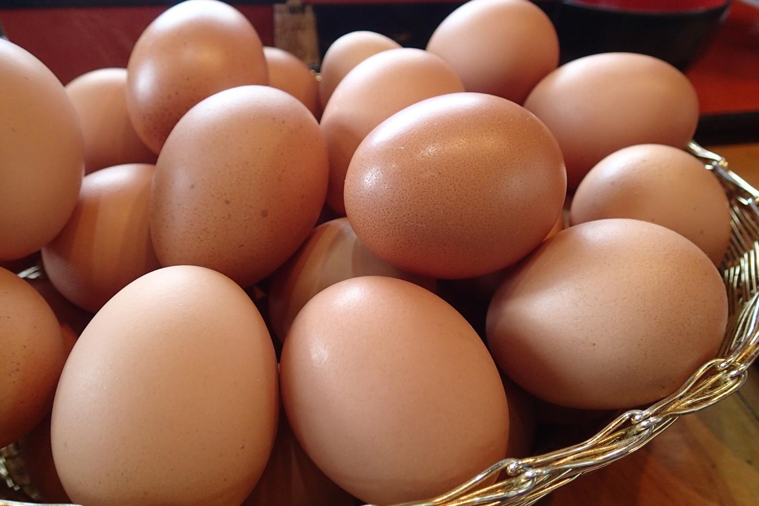 オススメアイテムや卵料理のレシピをご紹介