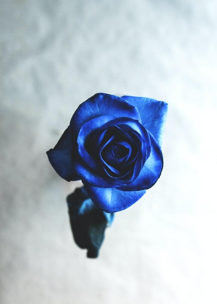 :BLUE