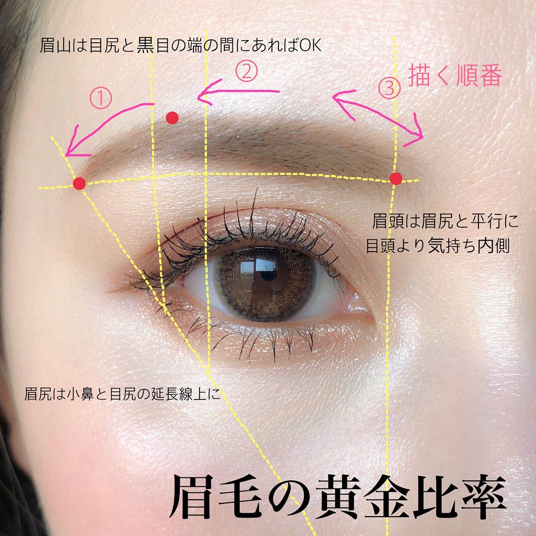眉毛の黄金比率