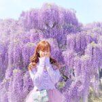 〈関東編〉ファインダー越しの君と揺れるお花。カメラを片手に出かけたいお花畑♡