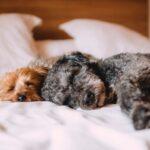 コントロールできない眠気や痛み。生理期間は自分と向き合いながら甘々でいこう