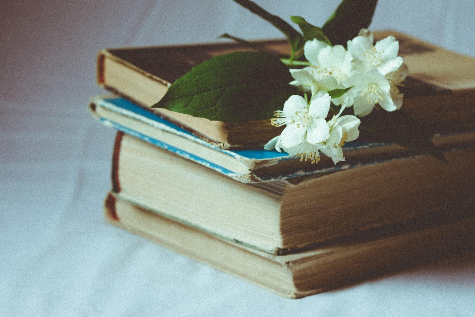 極意3)本を読むべし