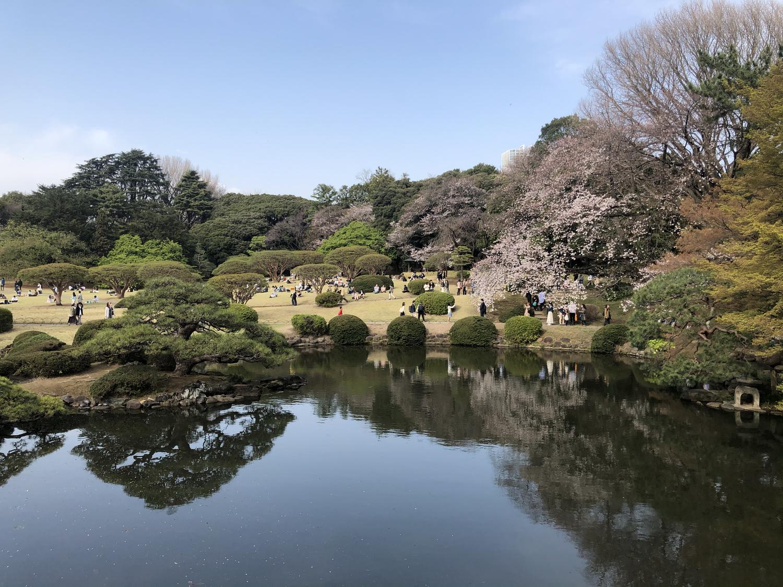 歴史と自然に触れる|新宿御苑