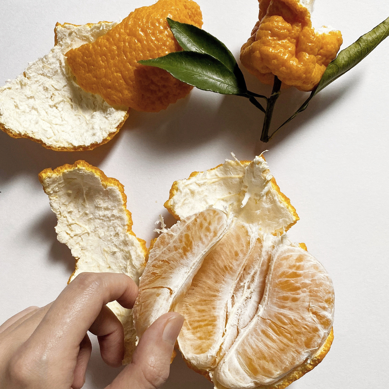  柑橘系の匂い