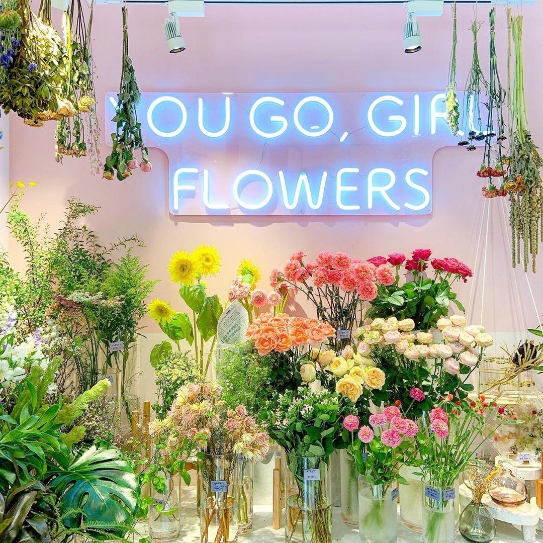 可愛いお花がたくさん並んでいます