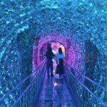 キラキラしたトンネルをくぐる人2人