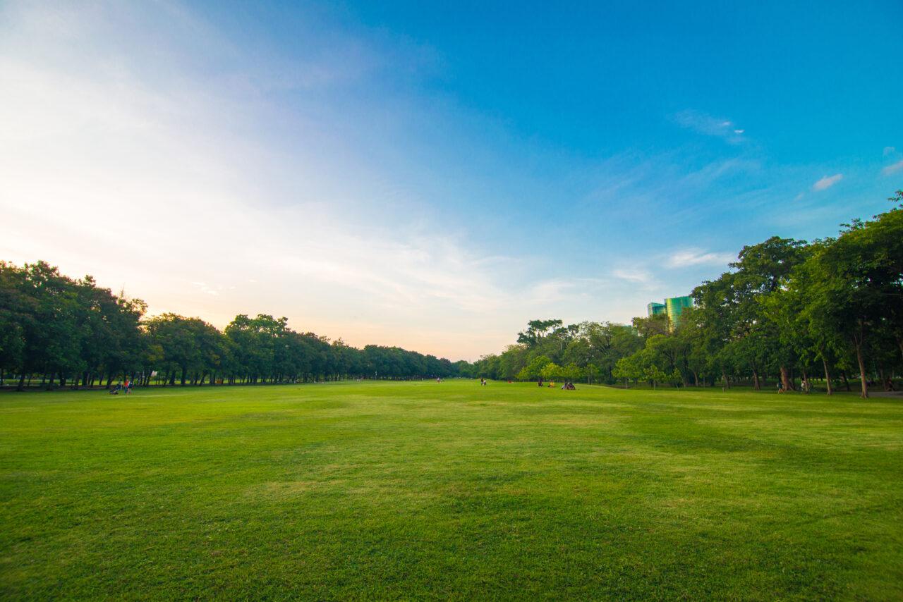 楽しく散歩して運動不足を解消しよう!東京のおすすめの公園&過ごし方♡