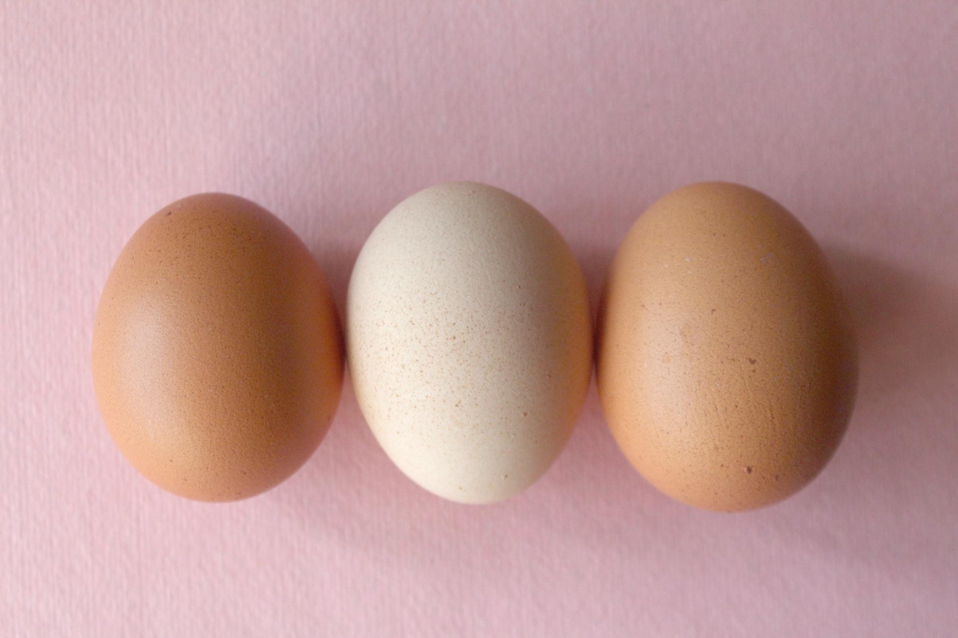 卵好きさん、必見!