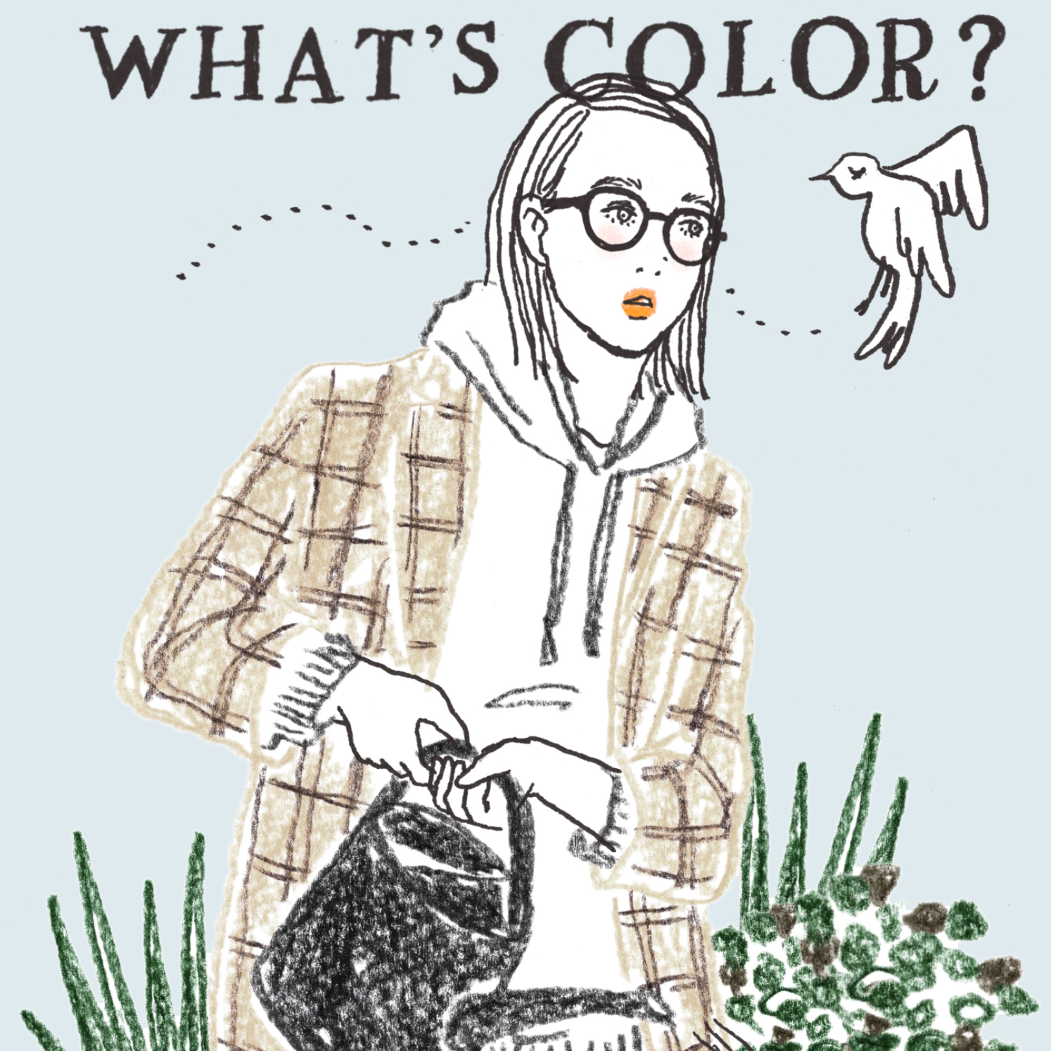 Q:ベランダに小鳥が迷い込んできました。何色の小鳥でしたか?