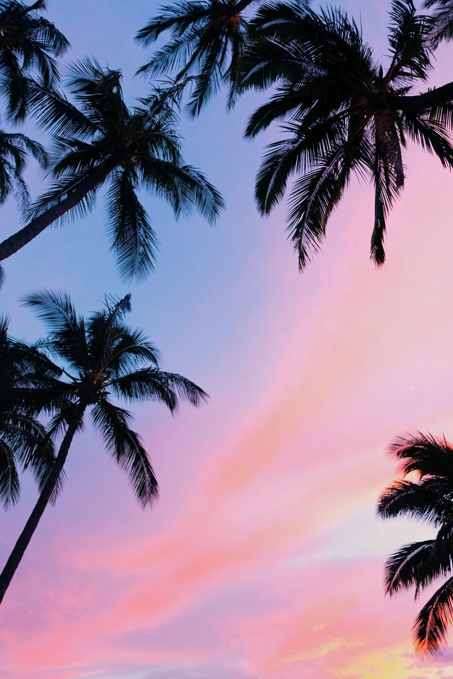 JAPANでもハワイを楽しんで♡