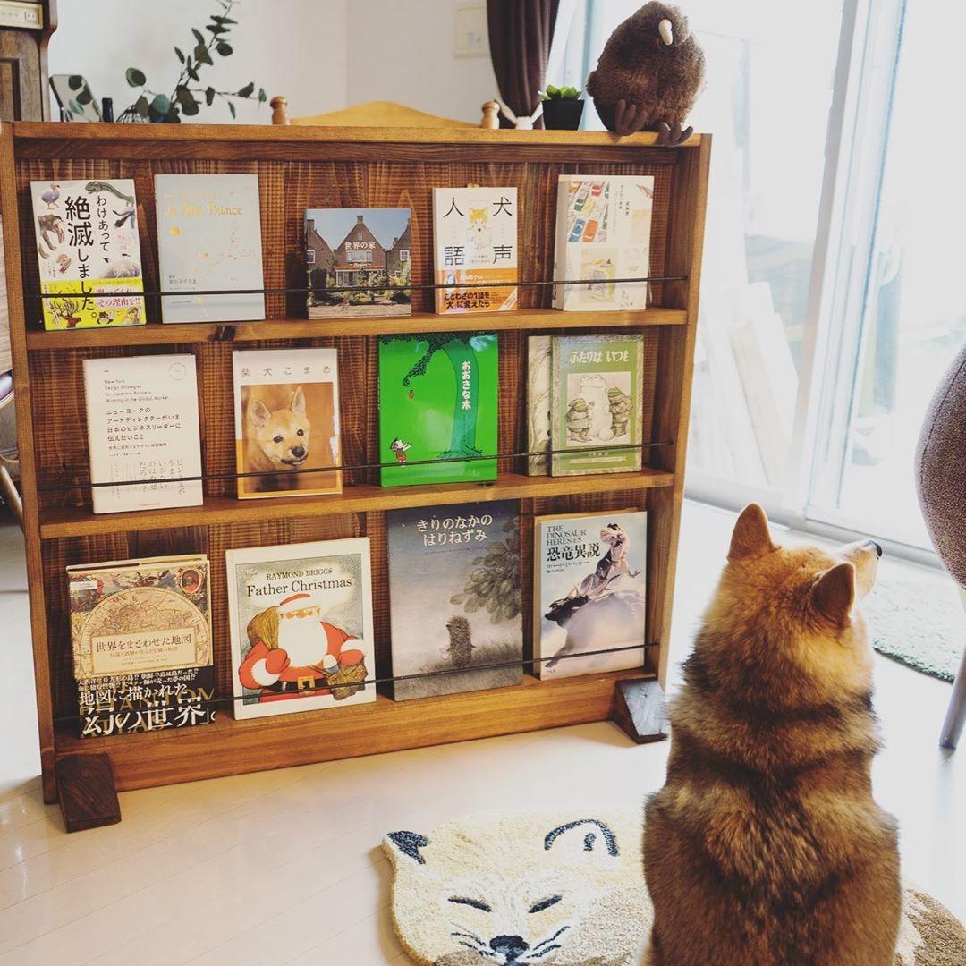 本棚DIYで見せる収納に♡
