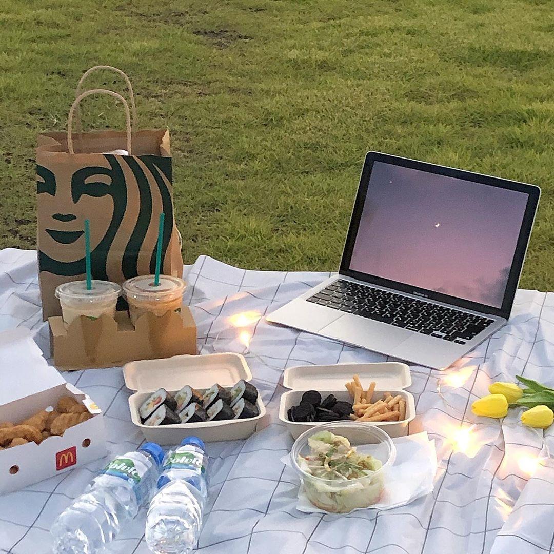 公園や浜辺でピクニック