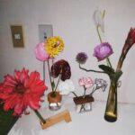 お花は男子があげる側って、誰が決めたの?フランクに'花を贈り合う関係'のススメ