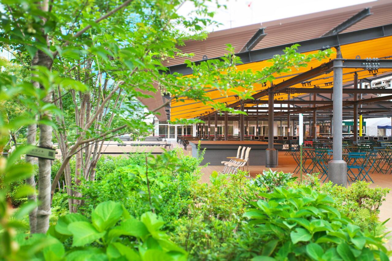 日本橋の屋上で自分をアップデート!Oggi Parkで「自分磨き」体験してみませんか?