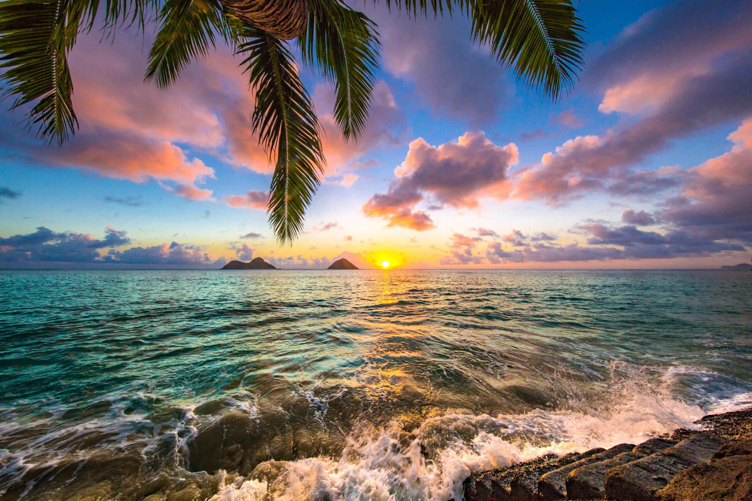 海だけじゃなくてハワイの文化が好きなんだ