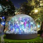 【関東編】2020〜21のイルミネーション情報!幻想的な光の世界を楽しみましょ