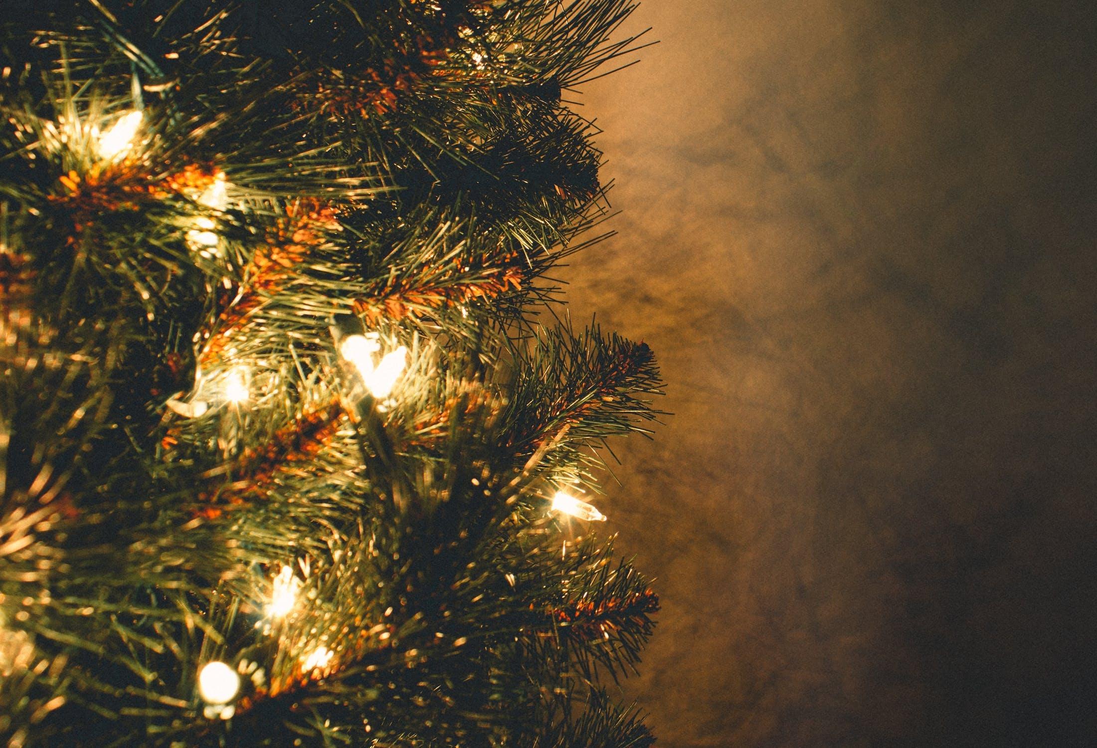 豪華なクリスマスに