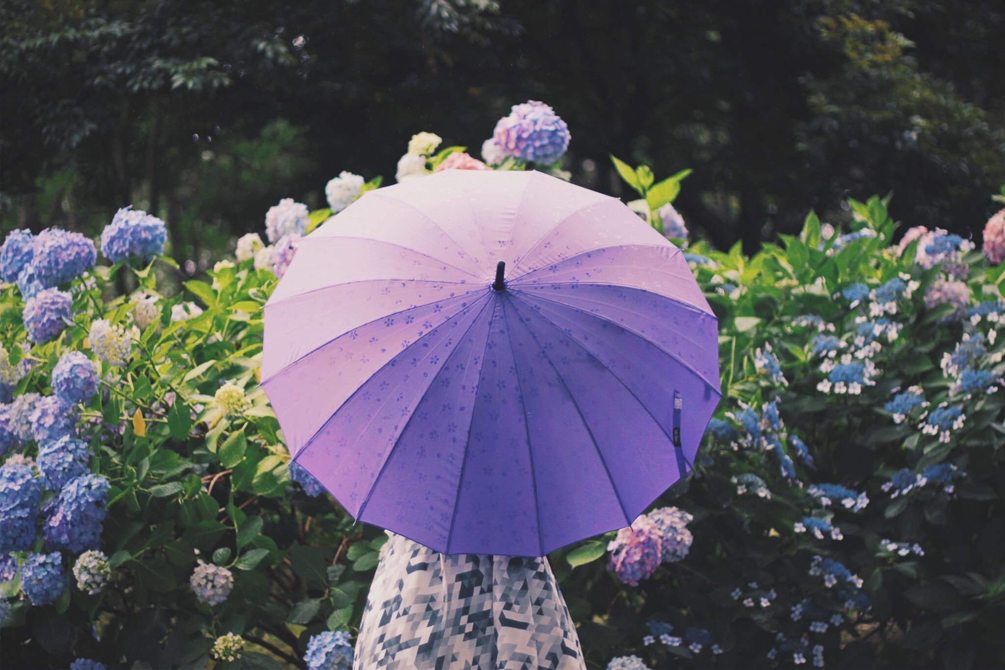 ♡)傘の持ち手の指先にトキメク