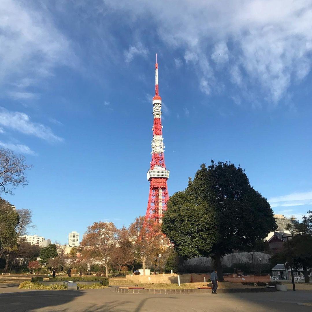 実は行った事ない!「東京タワー周辺」