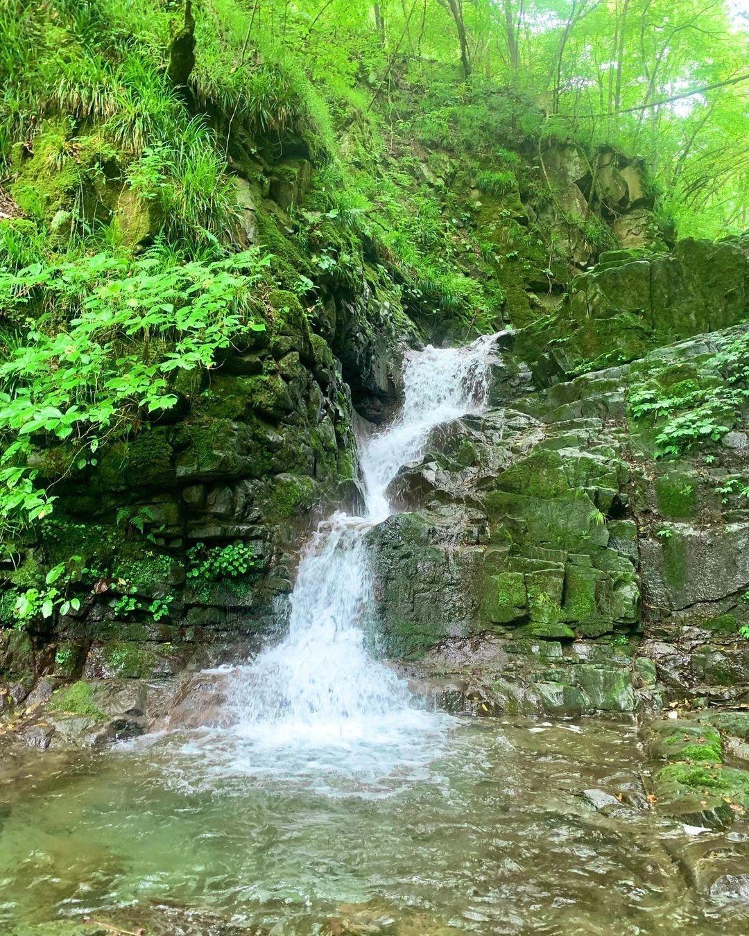 水の流れが美しい!九頭龍の滝