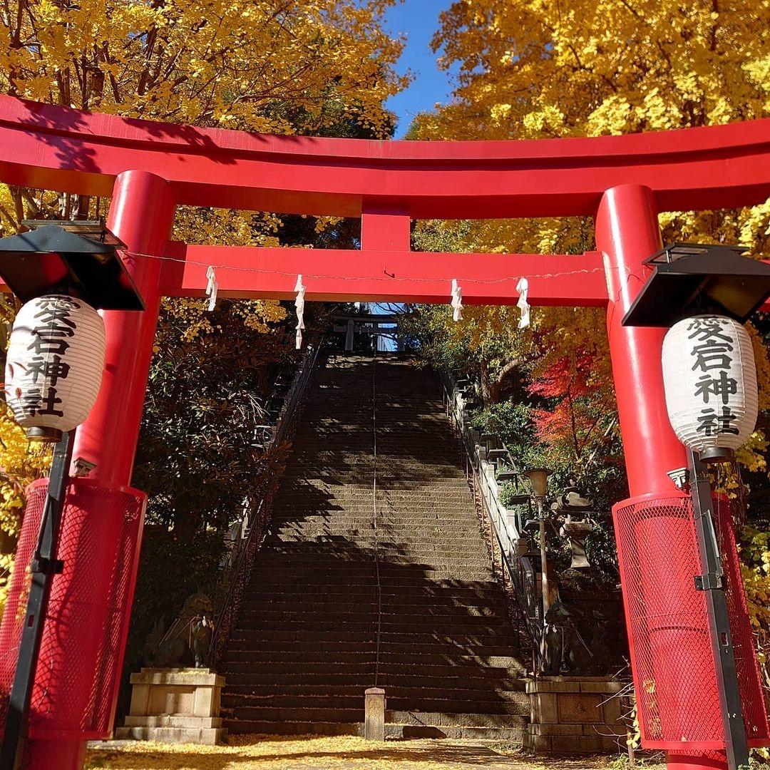登れば出世する階段?「愛宕神社」
