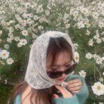 スカーフを頭に巻いてサングラス姿の女性の顔