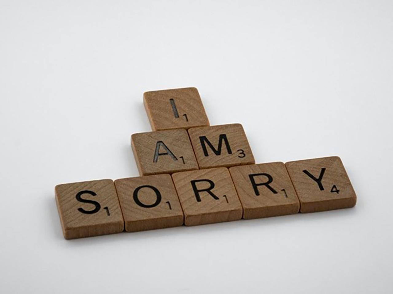 ちゃんと謝ることができる
