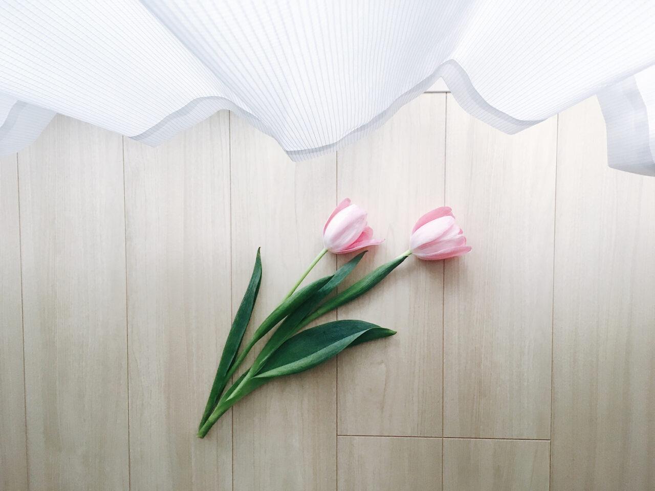 部屋の床にチューリップが置いてある、上にはカーテン
