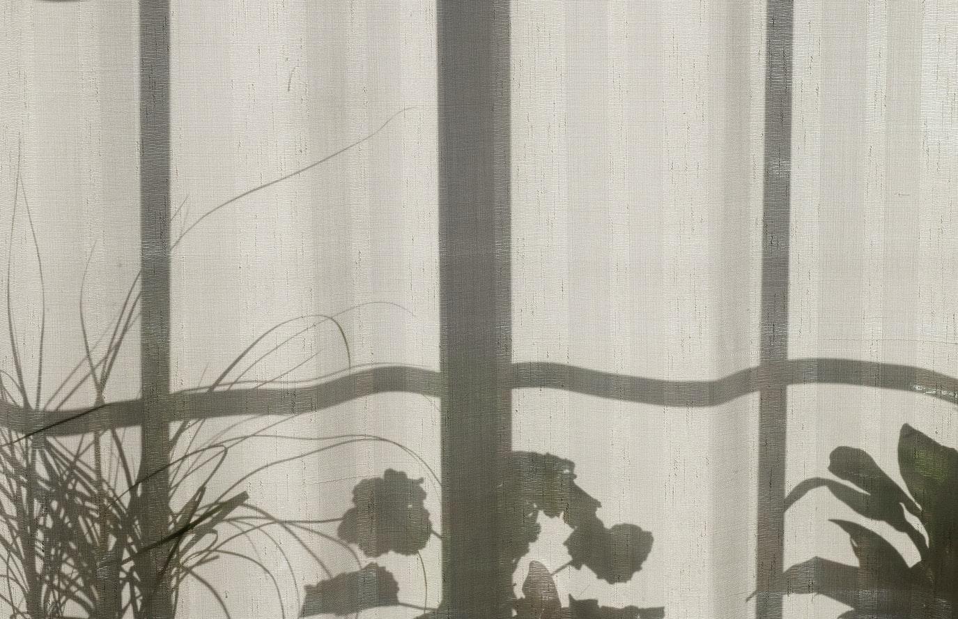 カーテンに映る影