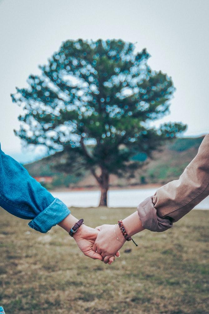 大きな木を背景に手をつなぐカップル