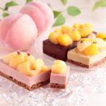 ベルアメール「桃のショコラテリーヌ」