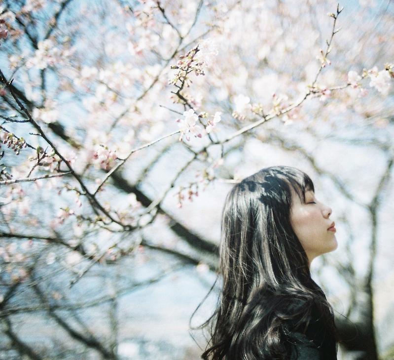 桜の木の下にいる女性