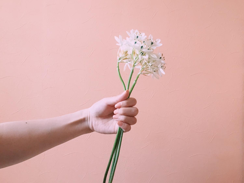 お花を持つ手