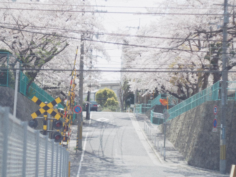 道を歩くイメージ