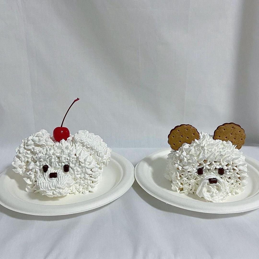 ハーフケーキ 韓国ケーキ